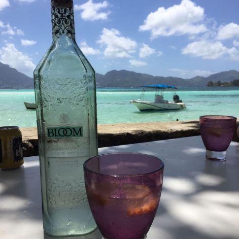 Bloom Gin, in Seychelles